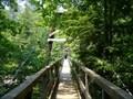 Image for Toccoa River Suspension Bridge on the Benton Mackaye Trail - Georgia