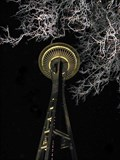Image for Viva! Sea-Tac - Seattle Space Needle