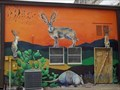 Image for Jackalopes - Georgetown, TX