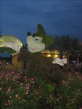 Image for Mickey Mouse Topiary ~ Contemporary Resort - WDW, FL