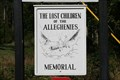 Image for Lost Children of the Alleghenies