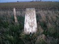 Image for Charlton Clumps Triangulation Pillar, Wiltshire