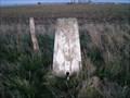 Image for Charlton Clumps Triangulation Pillar, Wiltshire