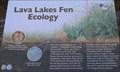 Image for Lava Lakes Fen - Oregon
