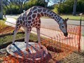 Image for Giraffe - Waco, TX