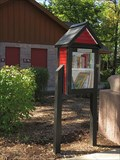 Image for Little Free Library #38620 - Luverne, Minn.
