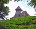 Image for Nevytsky Castle