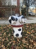 Image for Dalmatian Hydrant - Chicago, IL