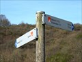 "Image for Hiking Trail Arrows ""Eifel-Traumpfad Monrealer Ritterschlag"", Monreal - RLP / Germany"