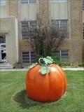 Image for Floyd County Courthouse Pumpkin - Floydada, TX