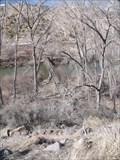 Image for Foot bridge over the Rio Grande in Rio Arriba County, New Mexico