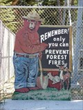 Image for Big Bog Smokey Bear - Waskish, Minn.