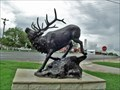 Image for Elk - Evant, TX