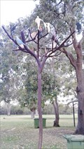 Image for Tree of Life - Bassendean, Western Australia
