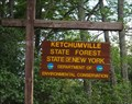 Image for Ketchumville State Forest - Tioga Co., NY
