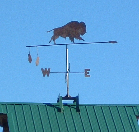 Buffalo Windvane Unique Weathervanes On Waymarking Com