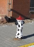 Image for Dalmation hydrant - Macklin, Saskatchewan