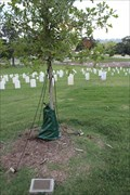 Image for Medal of Honor Recipients -- Chattanooga National Cemetery, Chattanooga TN