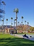 Image for Palm Tree Cell Tower at La Quinta Community Park - La Quinta, CA