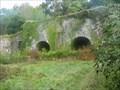 Image for Newquay Lime Kilns near Morwellham, Devon