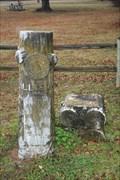 Image for L. J. Allison -- Confederate Cemetery, Atoka OK