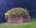 Image for Planter - Heather, Leicestershire