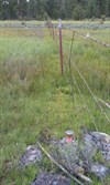 View of survey mark looking NE along wire fence line