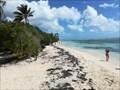 Image for Plage de Bois-Jolan - Sainte-Anne, Guadeloupe