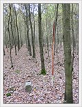 Image for TB 1515-17 V Lovcickém lese, CZ
