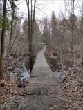 Image for Trail 27 Boardwalk in Stoney Swamp - Ottawa, Ontario, Canada