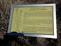 Image for Green Rabbitbrush - Eulalona Trail - Klamath Falls, OR