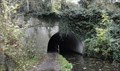 Image for South Portal - Woodley Tunnel - Peak Forest Canal - Woodley, UK