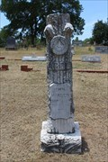 Image for John I. Warden - Soda Springs Cemetery - Parker County, TX