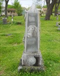 Image for Will L. McGavic - Hardy Cemetery - Hardy, Ar.