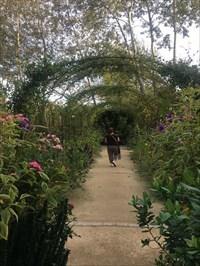 La Pergola Du Jardin Anglais Des Jardins De Chaumont Sur Loire
