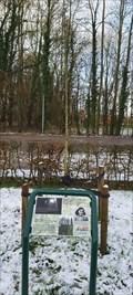 Image for Anne Frank boom:Witte Paardenkastanje;Anne Frank tree: White Horse Chestnut