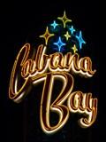 Image for Cabana Bay - Artistic Neon - Orlando, Florida, USA.