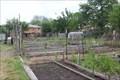 Image for East Dallas Community Garden -- Dallas TX