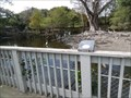 Image for Rookery Platform & Fence  -  Davie, FL