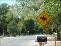 Image for Horseback Rider Crossing - Albuquerque, New Mexico