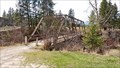 Image for Old Tobacco River Bridge - Eureka, MT