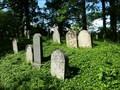 Image for židovský hrbitov / the Jewish cemetery, Zalužany, okres Príbram,  Czech republic