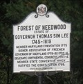 Image for Forest of Needlewood - Burkittsville, Maryland