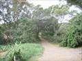 Image for Twin Falls Trail  -  Maui, HI