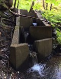 Image for Mill Stream Fish Ladder - Colwood, British Columbia, Canada