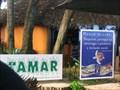 Image for Projecto Tamar, Praia do Forte - Bahia, Brazil