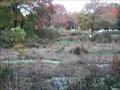 Image for Saylor Grove - Philadelphia, PA