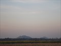 Image for Sunflower Fields, Lopburi, Thailand