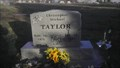 Image for Christopher Michael Taylor Grave Stone