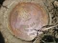 Image for NGS F 365 RESET 2004, Nebraska